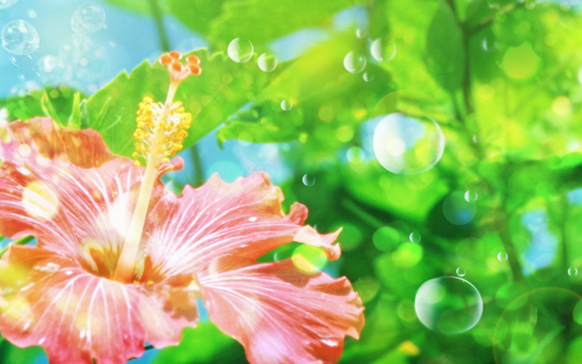 Free Fairies And Fantasy Wallpaper For Vista