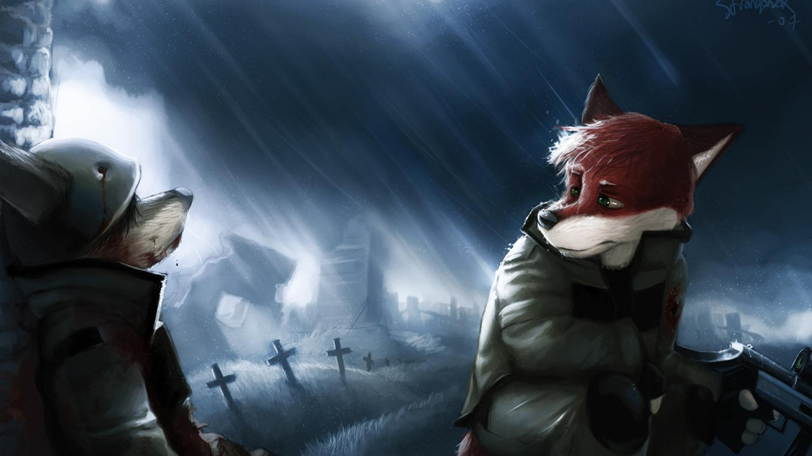 Furry Wallpaper 177871 High Quality And Resolution Wallpapers 1600x900