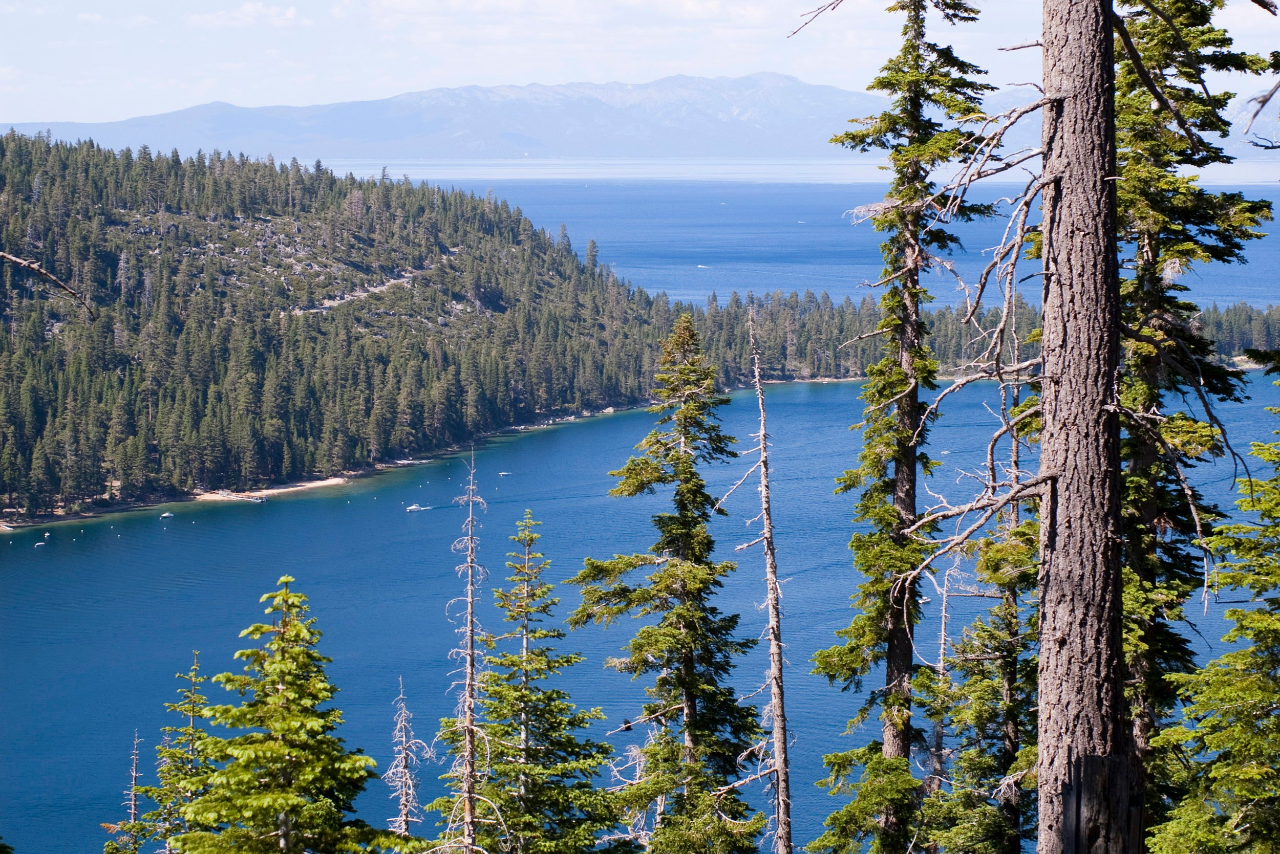 lake tahoe Desktop Wallpaper iskincouk 2500x1669