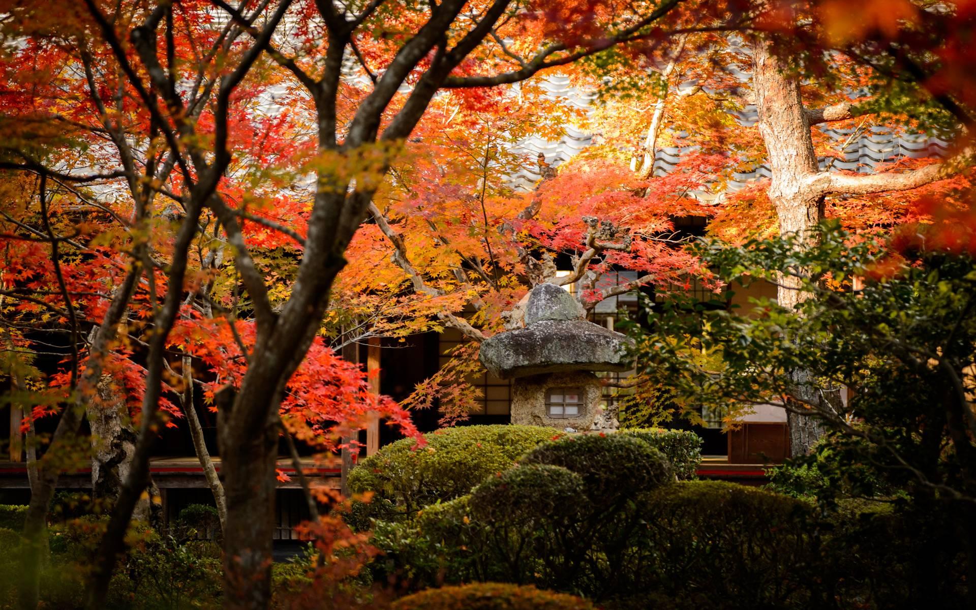 Beautiful Kyoto Wallpaper 19560 1920x1200 px FreeWallSource 1920x1200