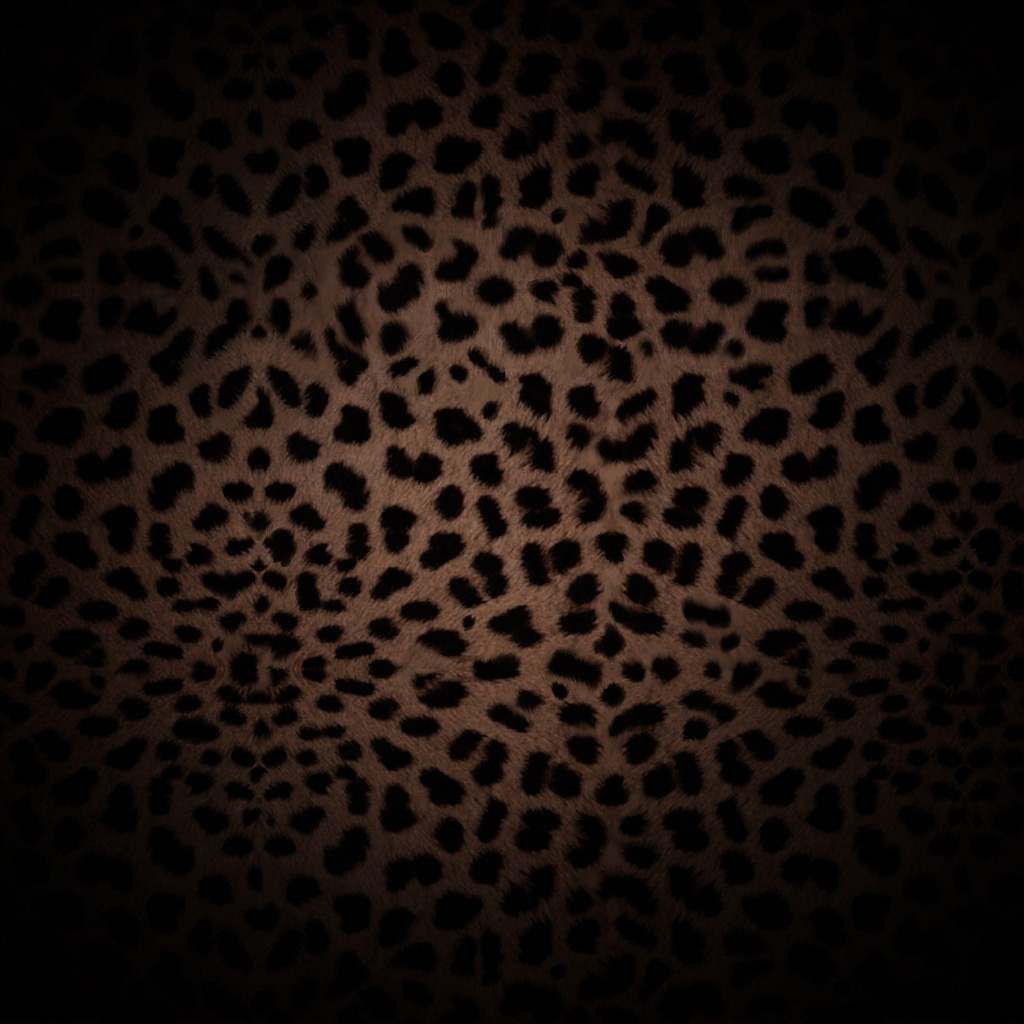 Wallpapers Pictures Backgrounds 1024x1024 Leopard Skin iPad Wallpaper 1024x1024