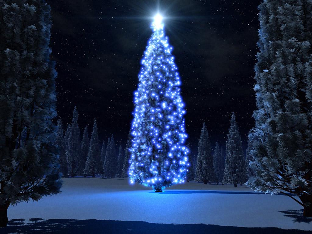 Blue Christmas 1024x768