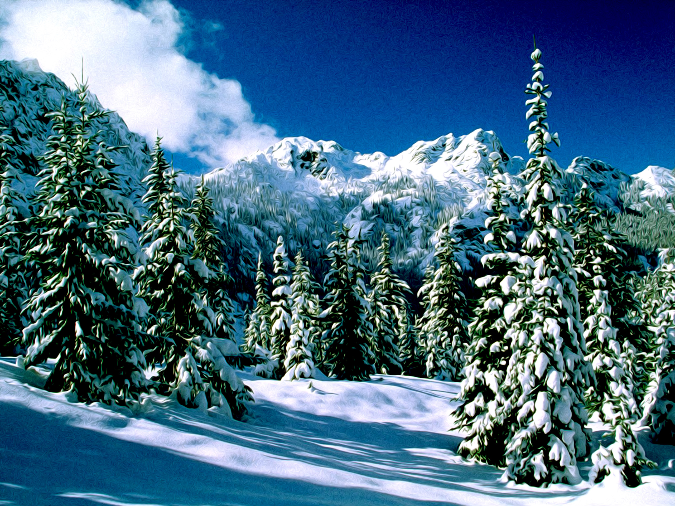 Winter Nature Snow Scene Desktop Wallpapers for Widescreen HD 2560x1920