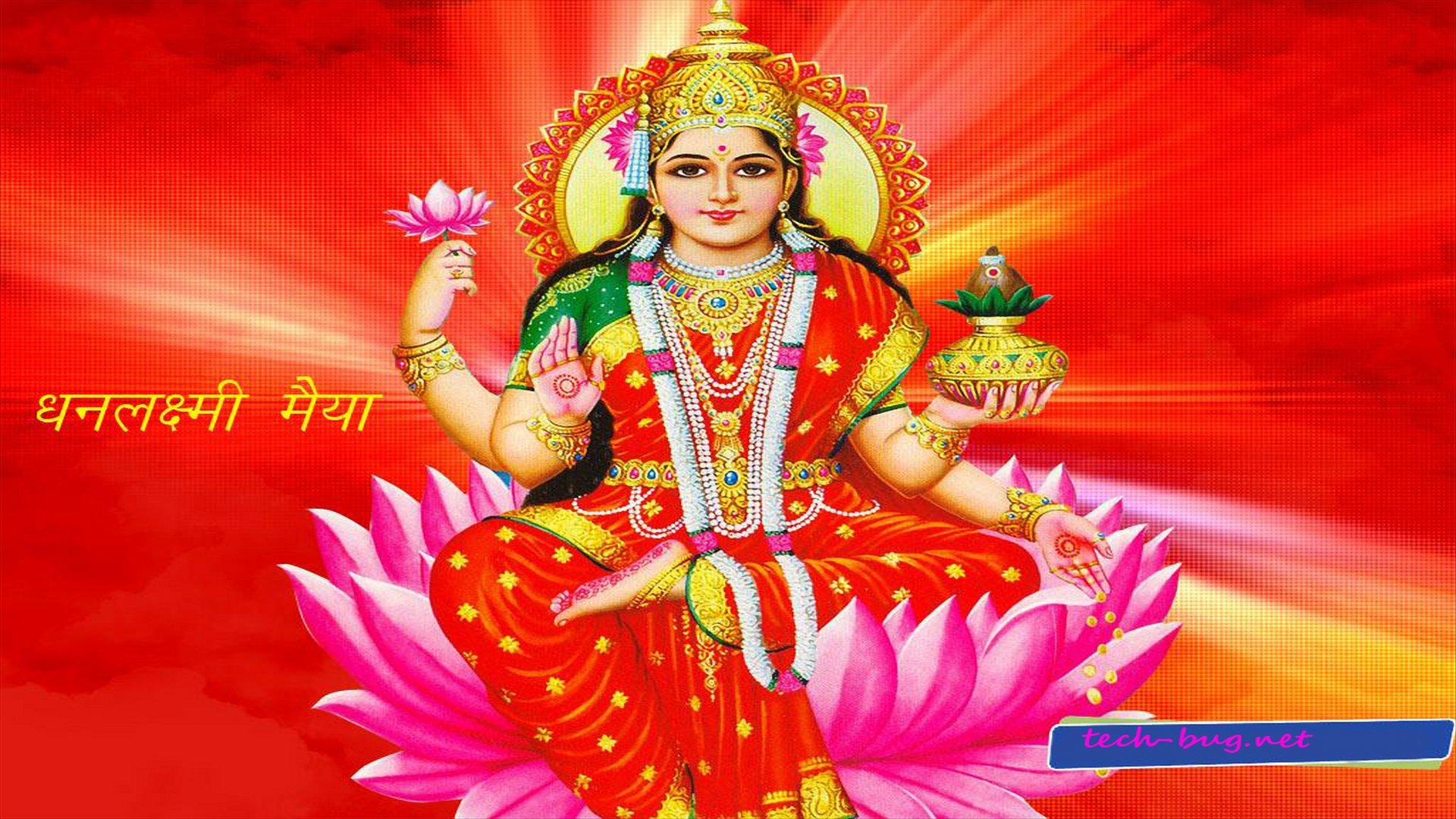 Stills Desktop Themes Laxmi Goddess Hindu wallpapers HD   188966 1920x1080