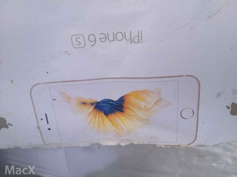 Claimed iPhone 6s Box Appears Similar to iPhone 6s Plus Packaging 800x600