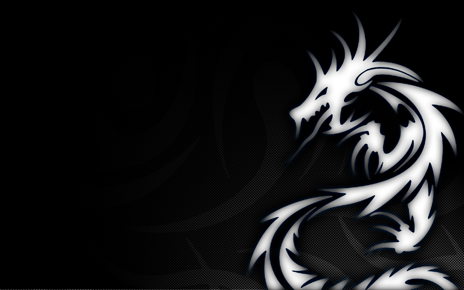 Free Download Hd Wallpapers Download Wallpapers In Hd White Dragon