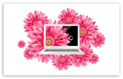 Laptop 3 HD wallpaper for Standard 43 54 Fullscreen UXGA XGA SVGA 510x330