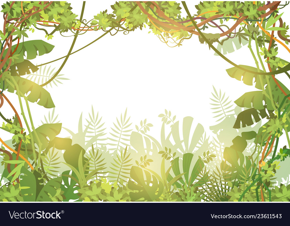 Jungle tropical background rainforest with tropic Vector Image 1000x780