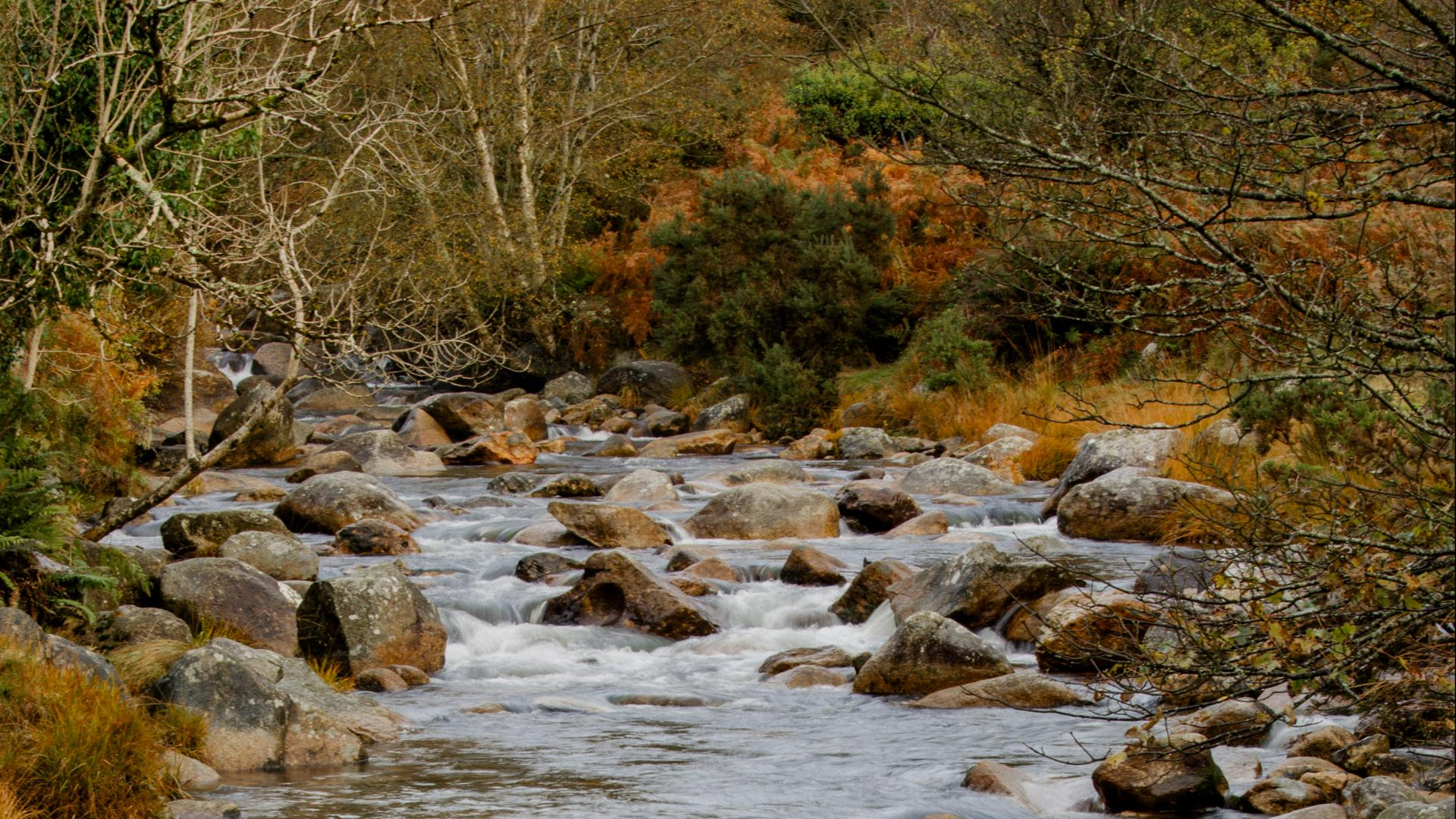Things to Do in Wicklow 1920x1080