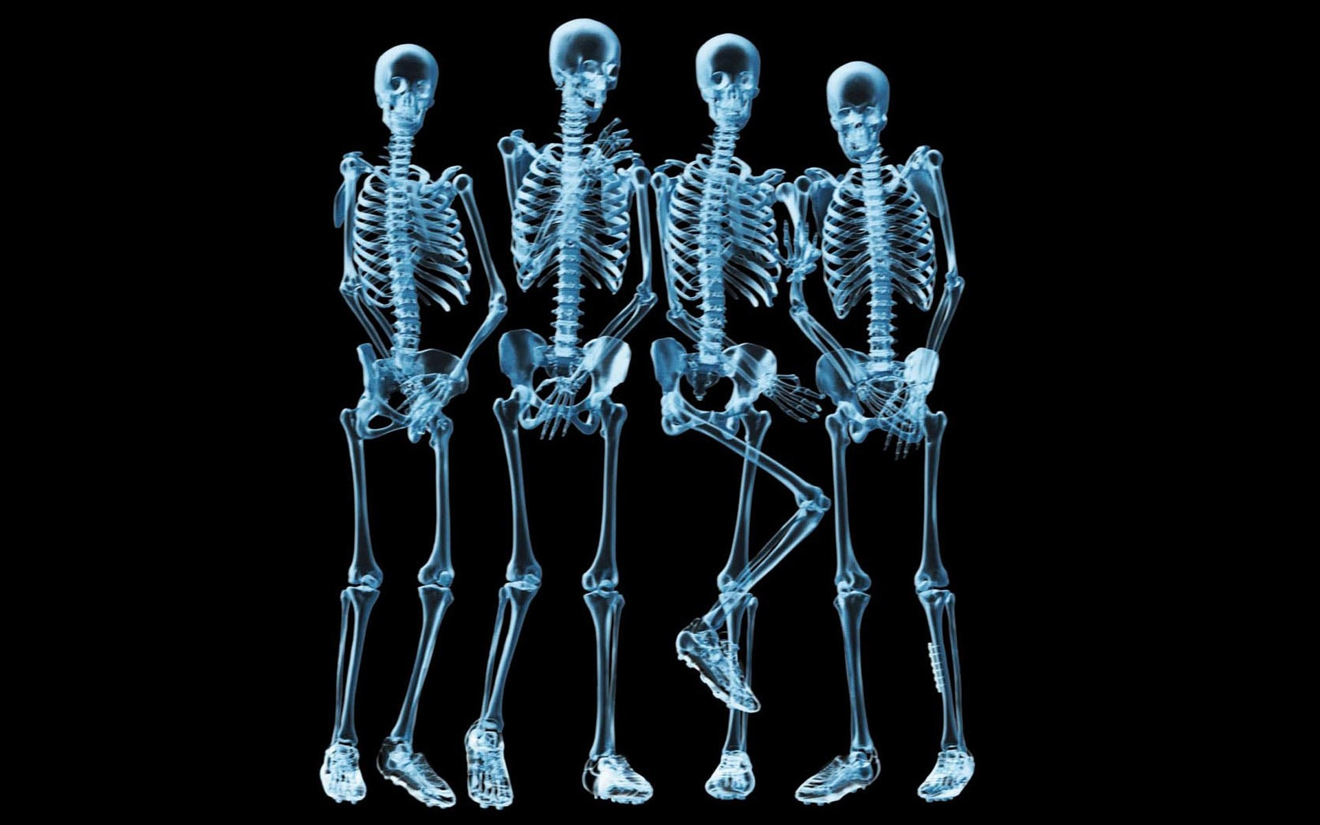 Funny X Ray Pictures loopelecom 1920x1200
