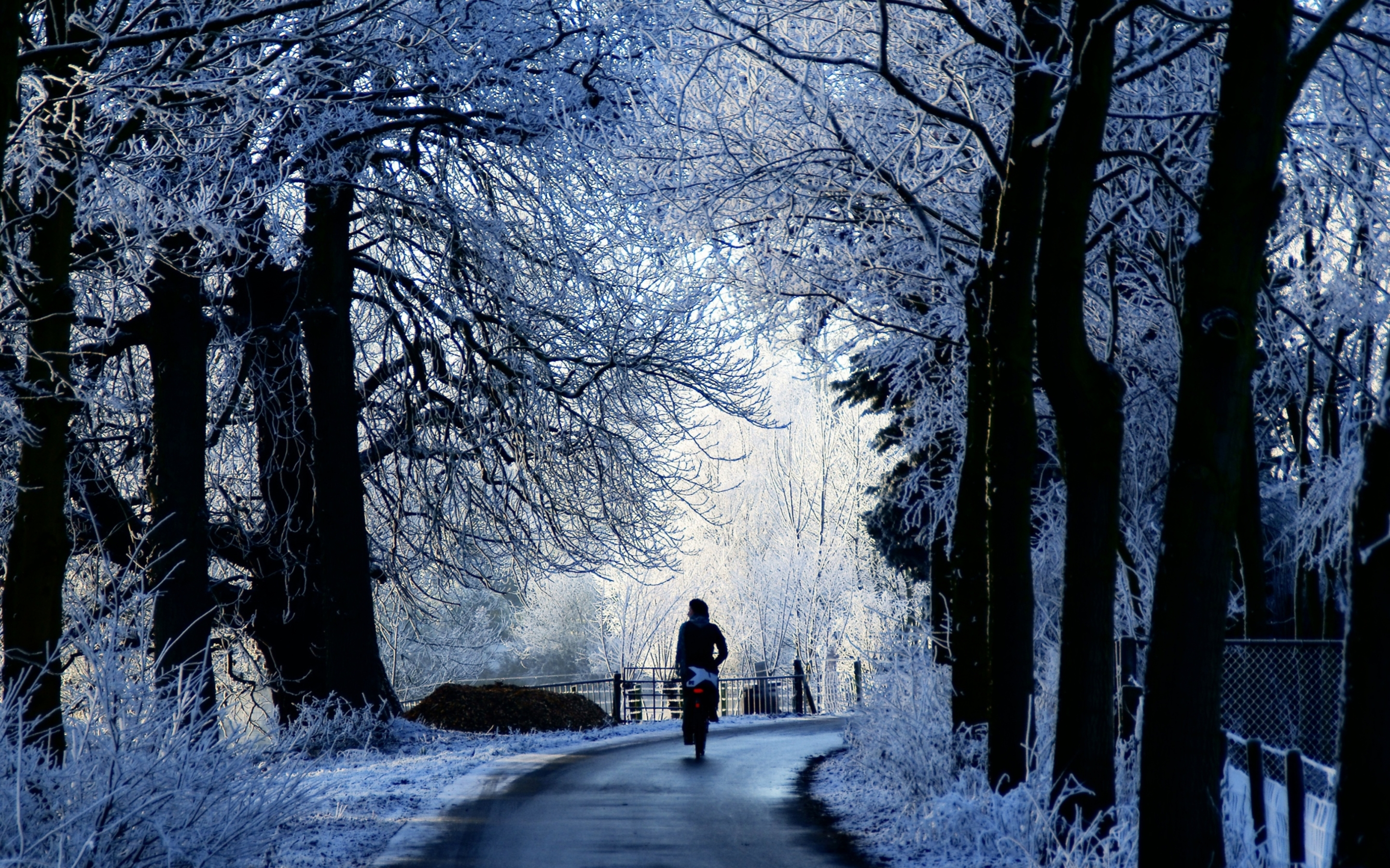 Winter Road Scene Mac Wallpaper Download Mac Wallpapers 2880x1800