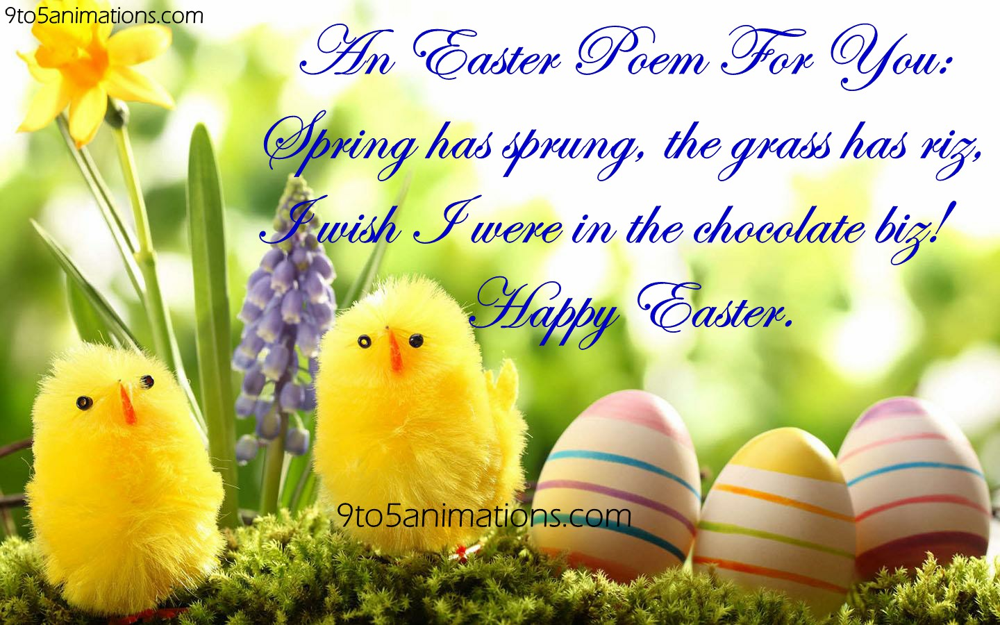 Easter Wishes Quotes HD Wallpapers 9To5AnimationsCom 1440x900