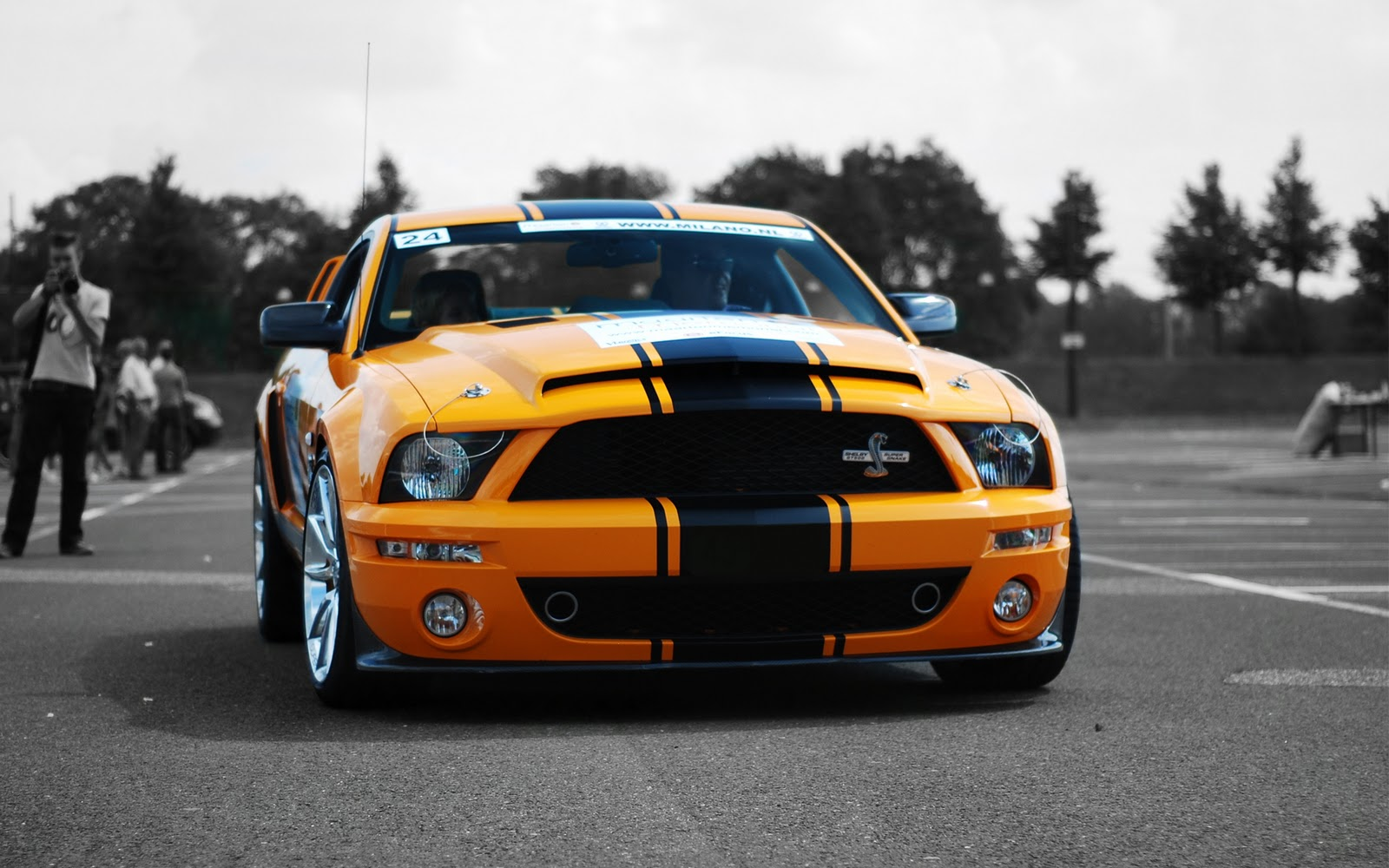 striped Ford Mustang muscle supercar 2012 download wallpapers 1600x1000