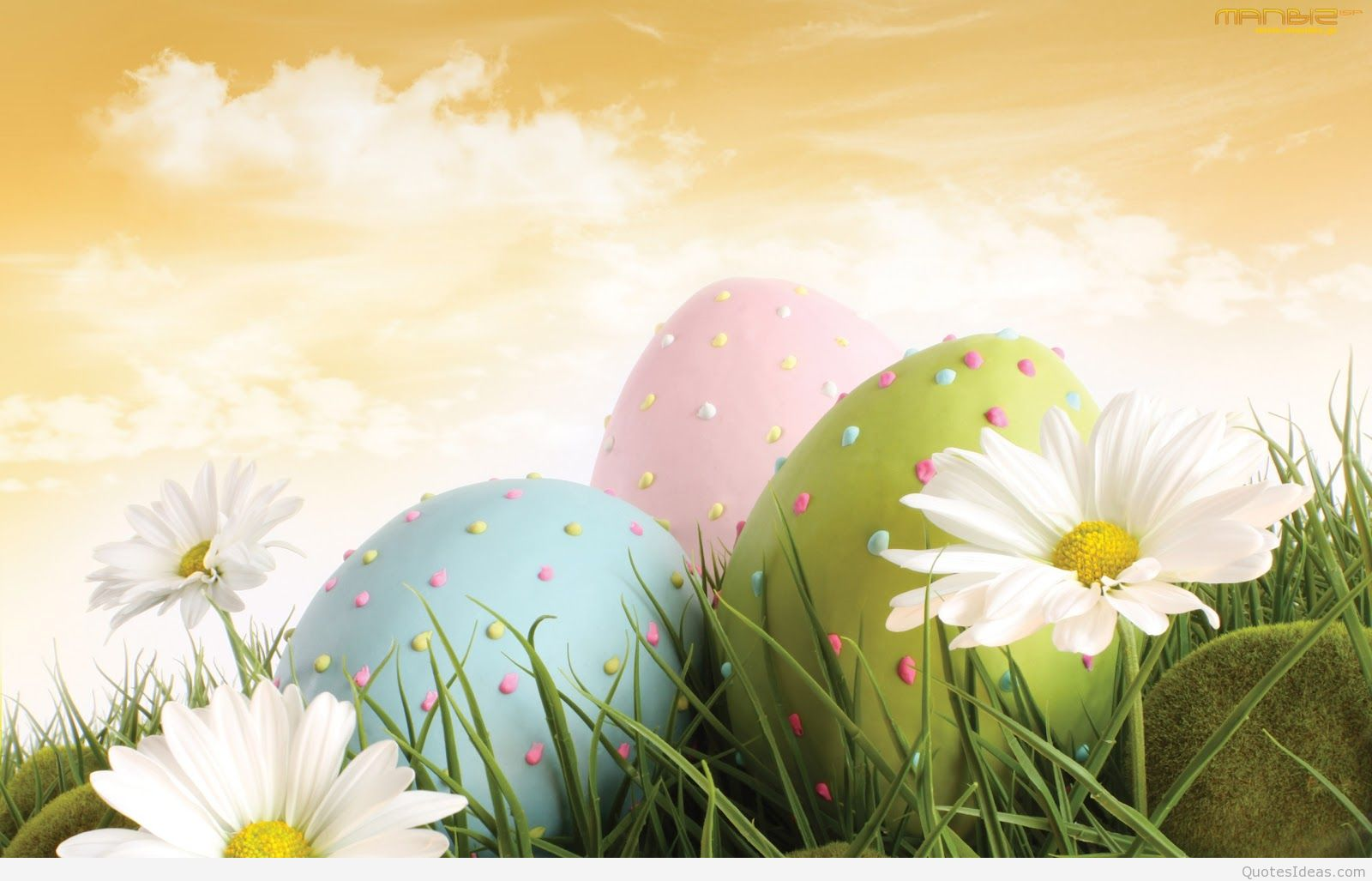happy easter wallpapers 1600x1027