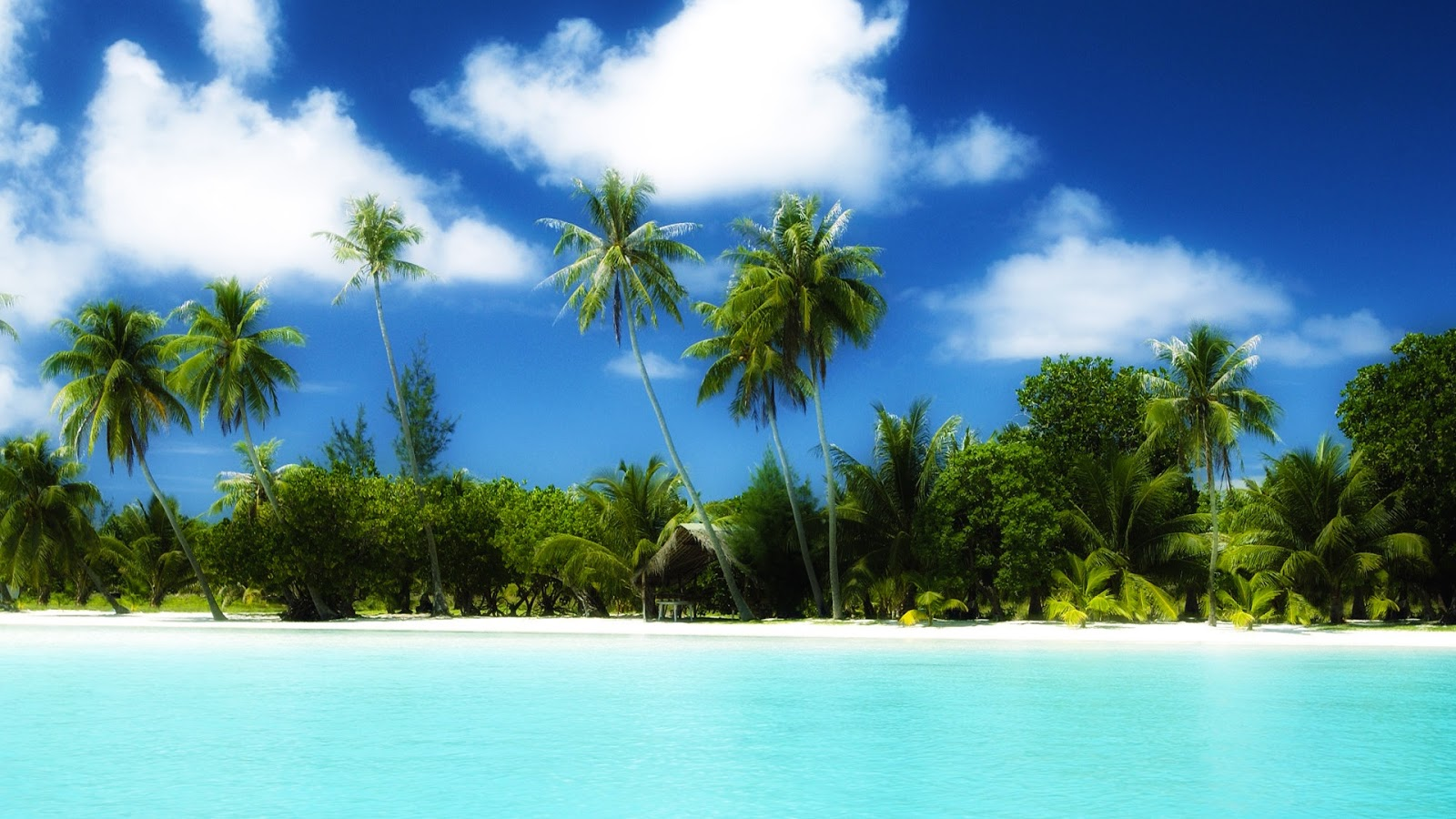 hdr wallpapers 1080p tropical - photo #11
