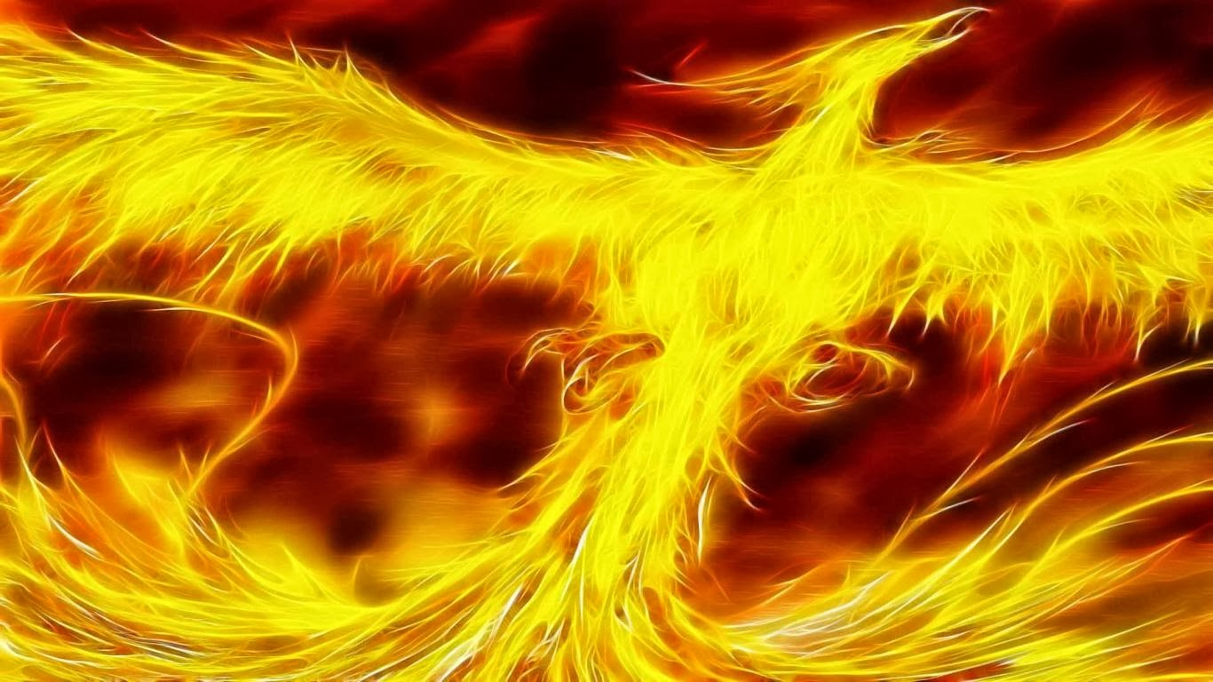 Cool Phoenix Bird Wallpaper Download Cool Phoenix Bird Wallpaper 1366x768