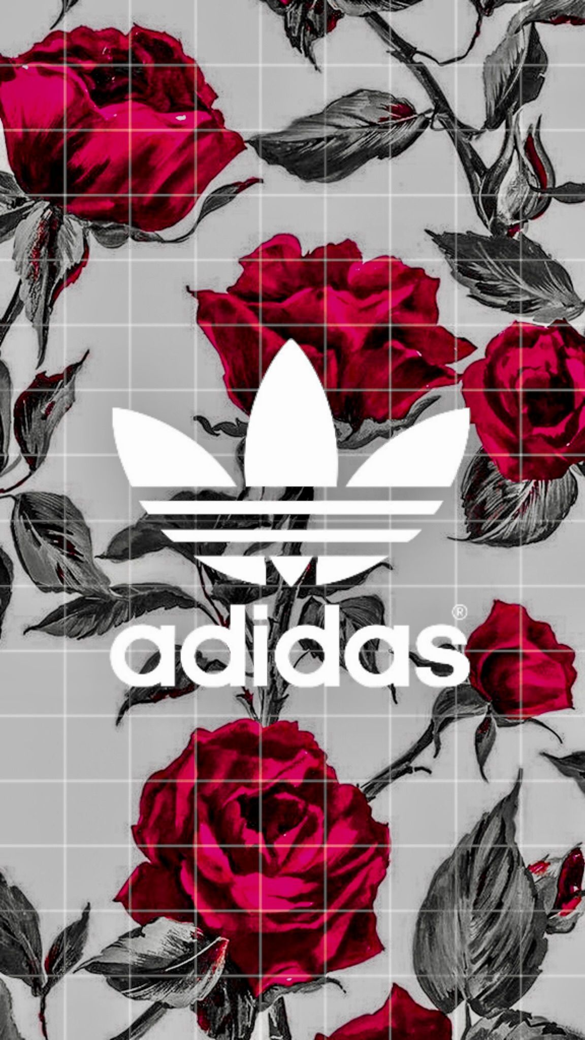 Free Download Roses Red Black Adidas Wallpaper Iphone Iphone In