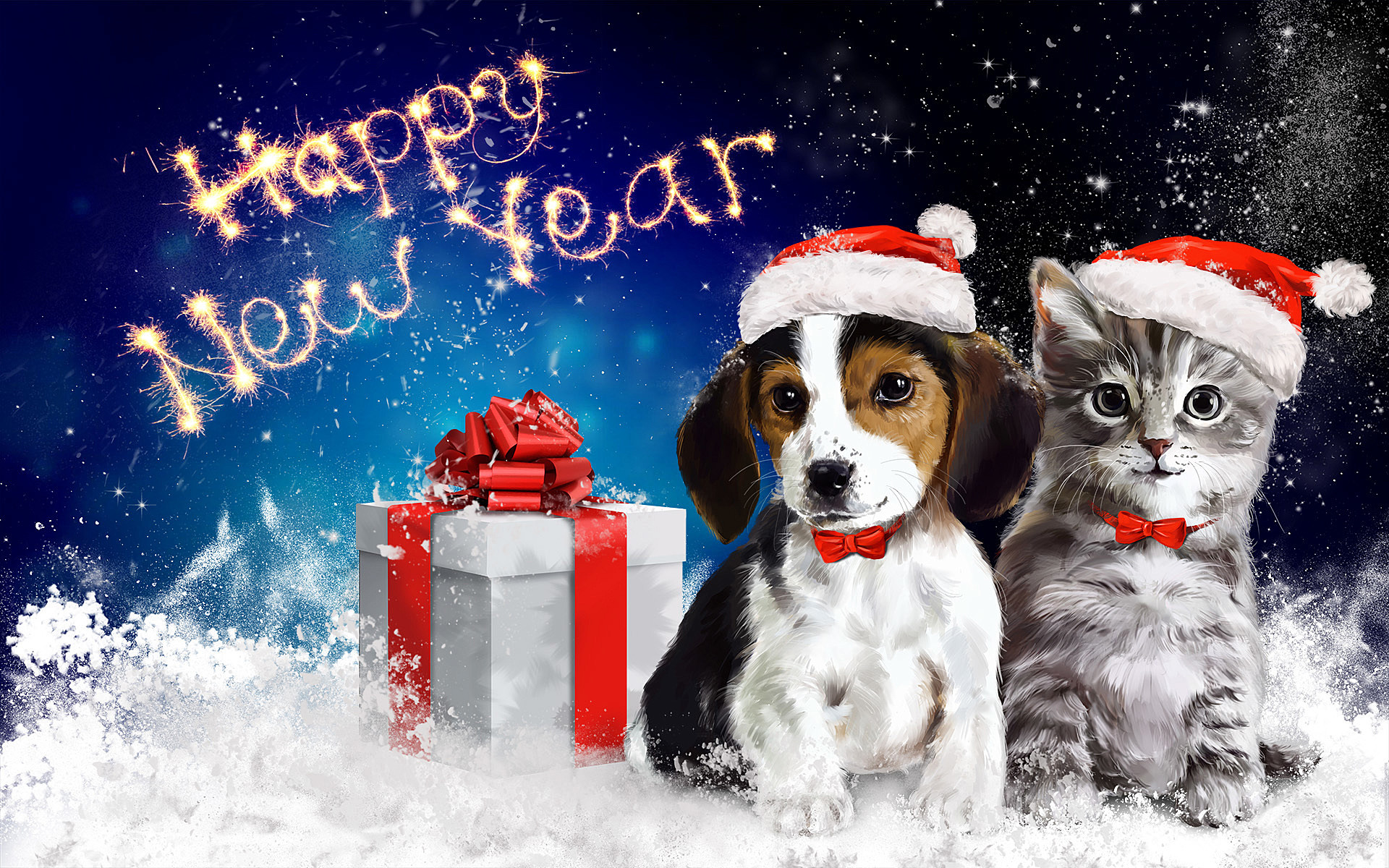 kitten new year wallpaper wallpapersafari