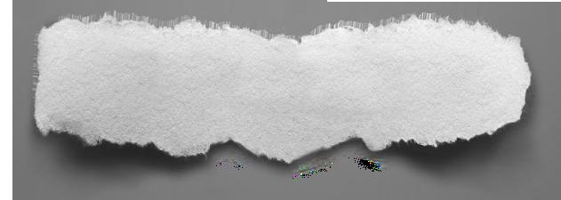 73+ Png Wallpaper on WallpaperSafari