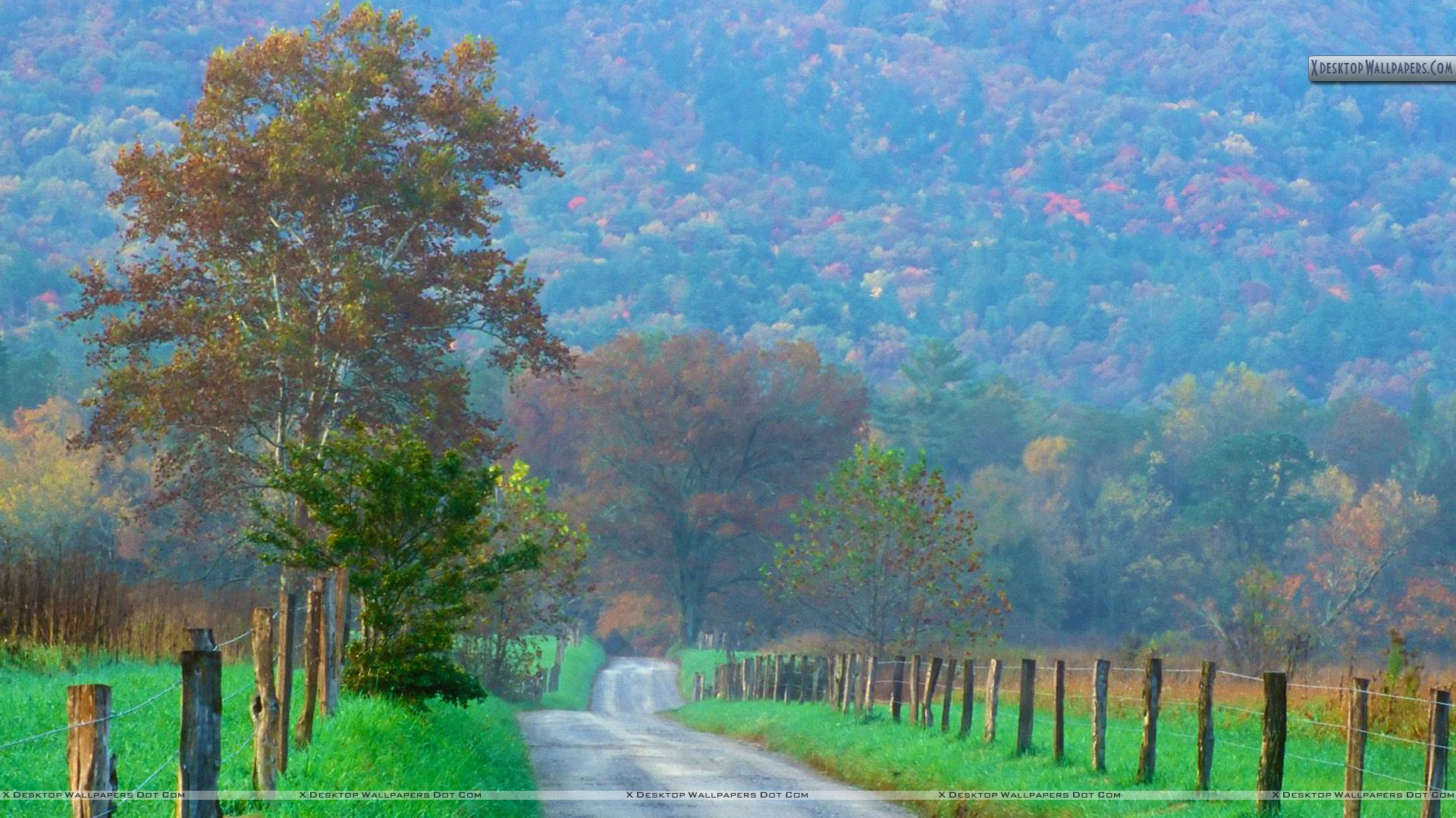 Cades Cove Great Smoky Mountains National Park Tennessee 1920x1080