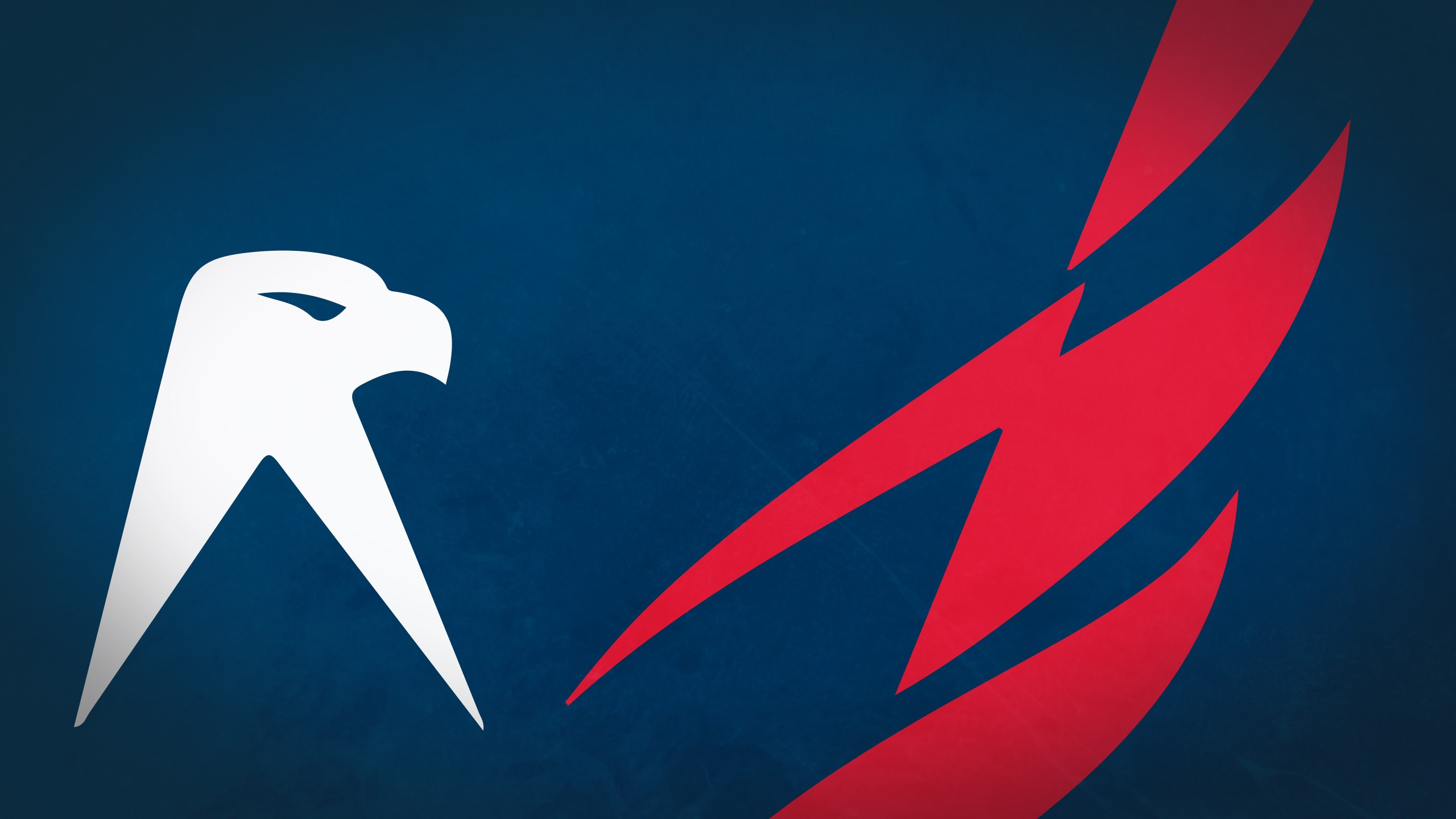29 Washington Capitals HD Wallpapers Background Images 2560x1440