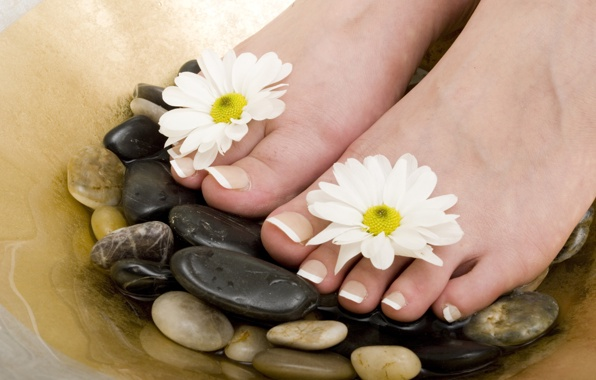 Wallpaper spa pedicure flowers stones wallpapers flowers   download 596x380