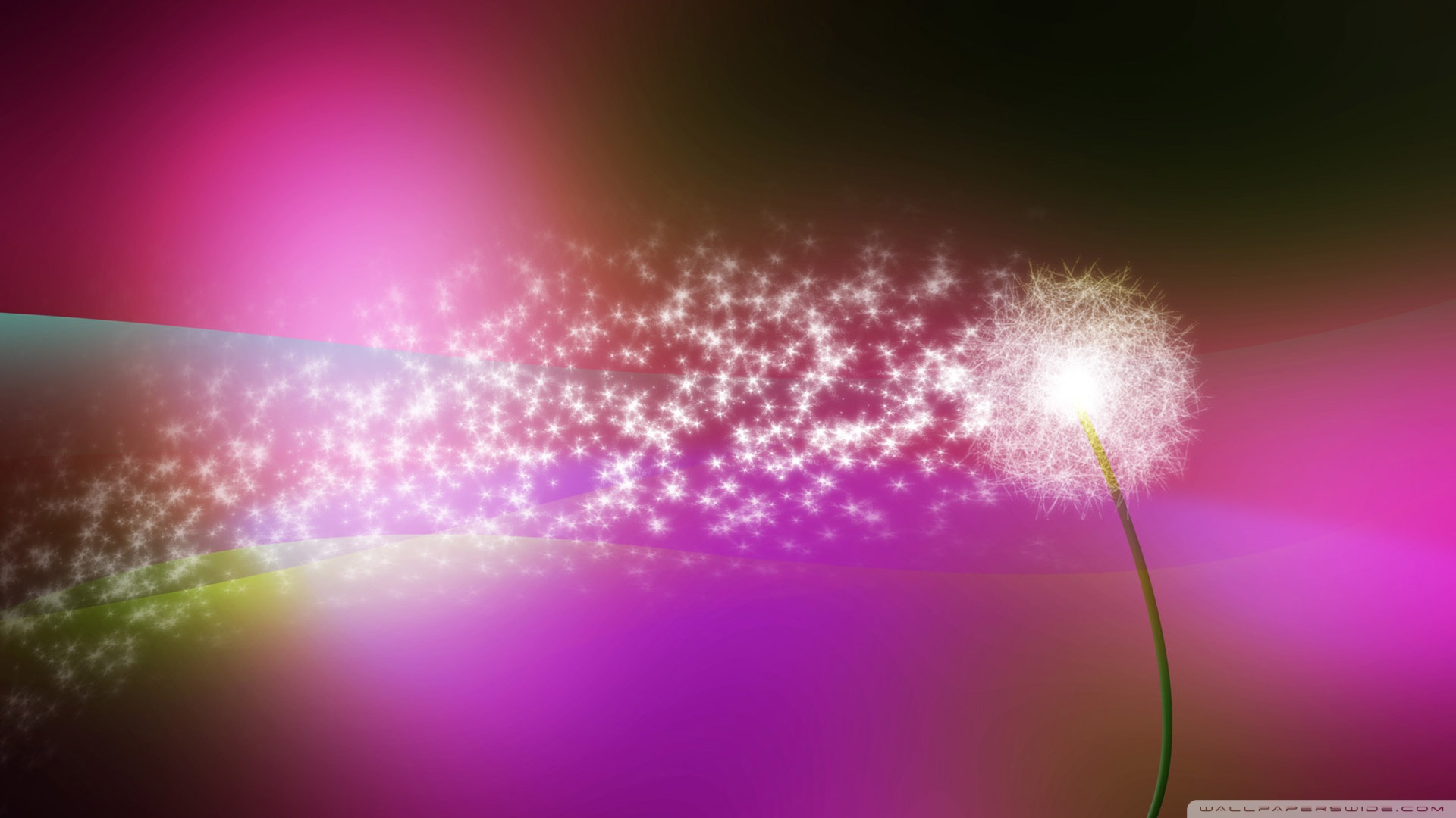 Dandelion Blowing In The Wind Wallpaper 1920x1080 Dandelion, Blowing ...