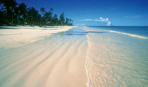 Safari New Jersey >> National Geographic Wallpaper Beaches - WallpaperSafari