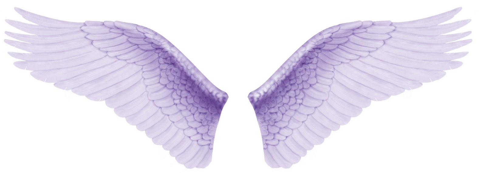Wings Angel Wallpaper Download 1600x572