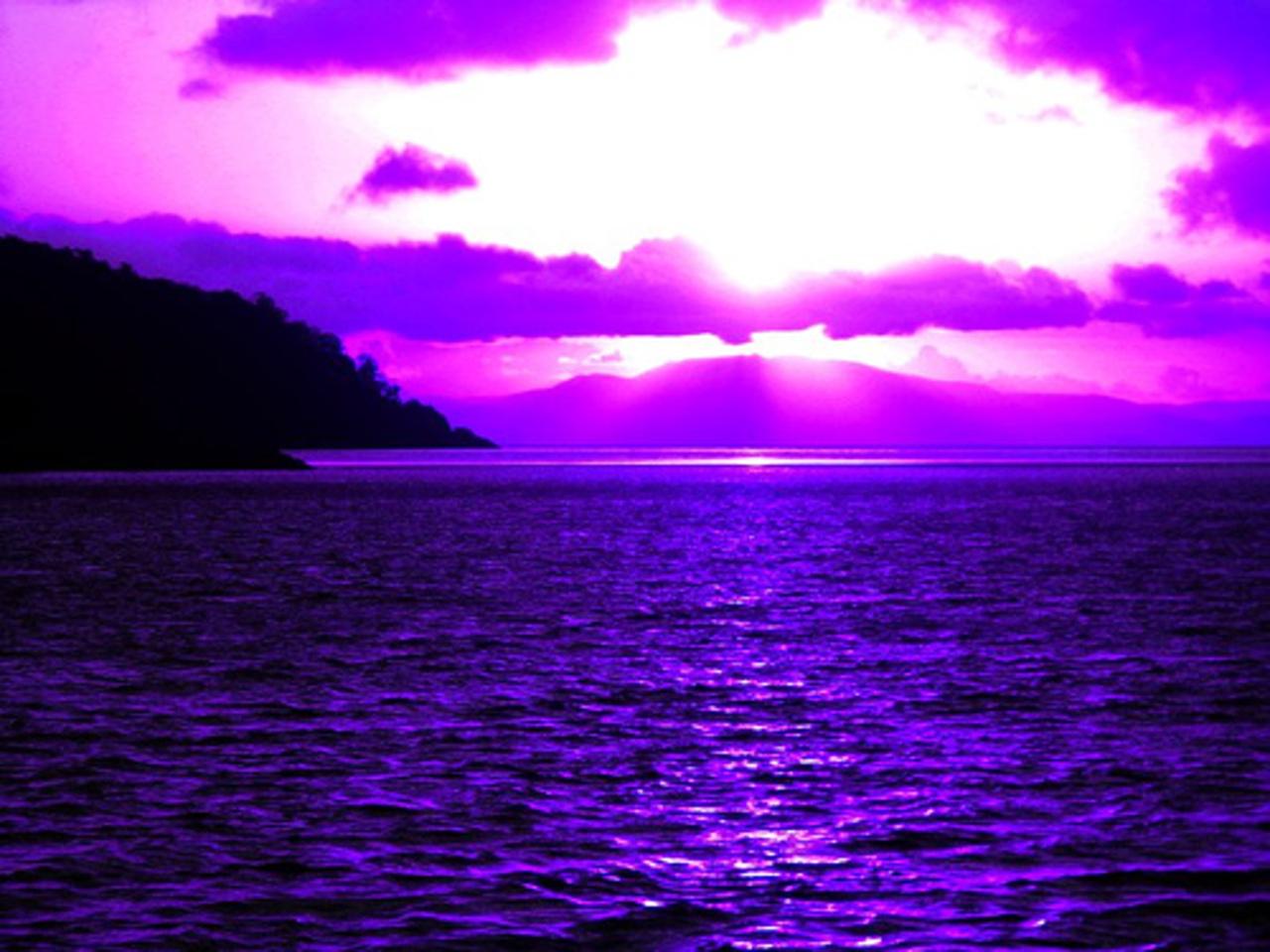 Pink Beach Sunset Wallpaper: Purple And Pink Sunset Wallpaper
