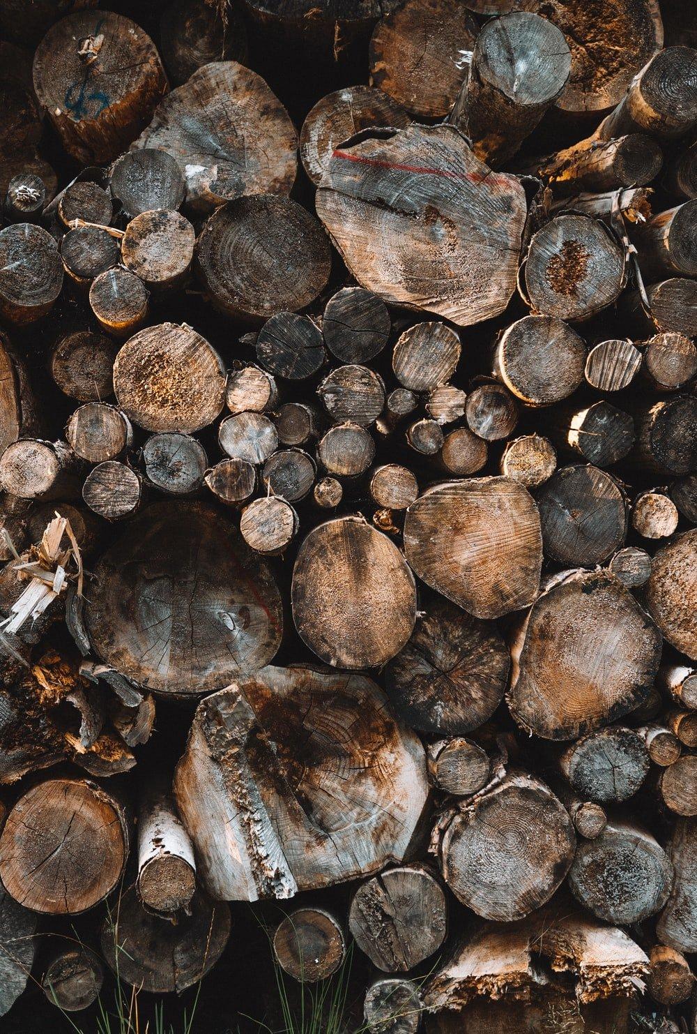 900 Wood Background Images Download HD Backgrounds on Unsplash 1000x1482