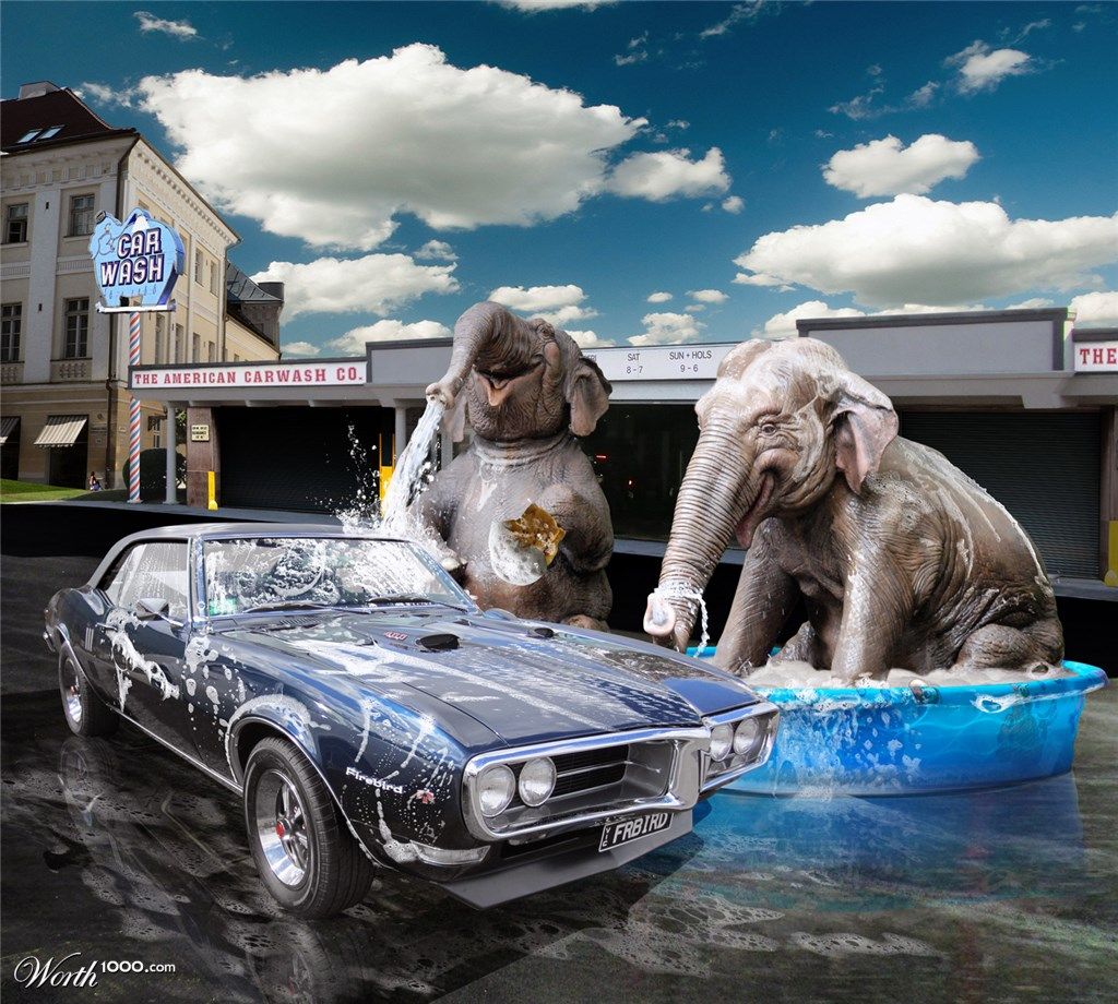 Elephant Car Wash Wallpaper Desktop 11680 Wallpaper ForWallpapers 1024x920