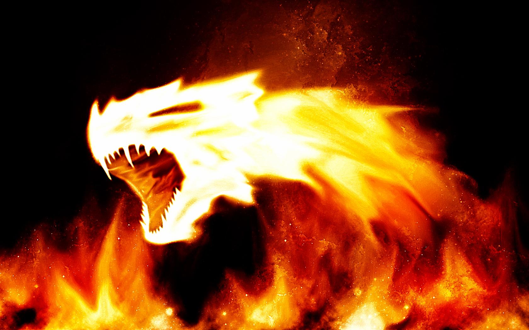 Free Download Fire Dragon Background Wallpaper Fire Dragon