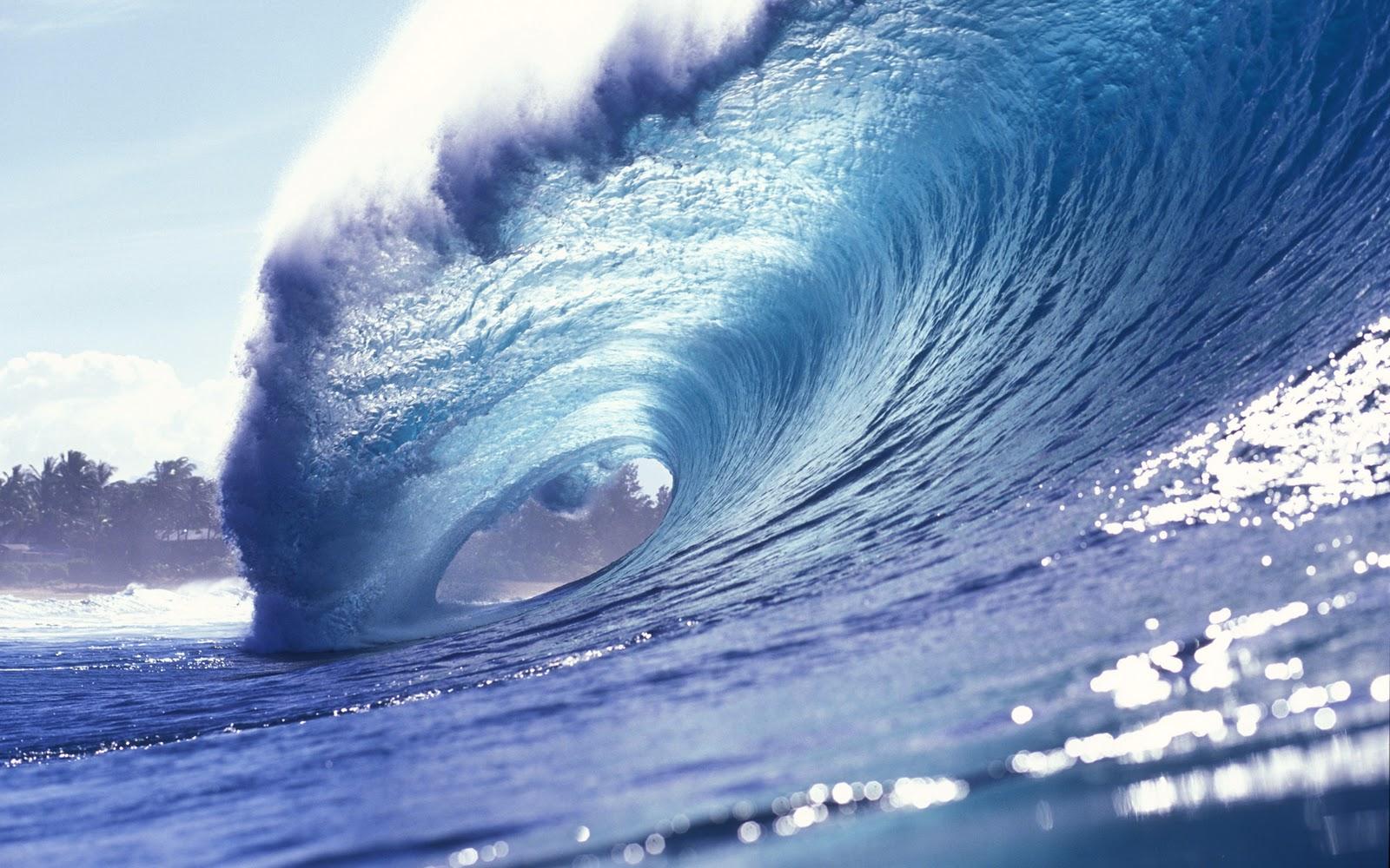 49 Surf Wallpaper For Desktop On Wallpapersafari