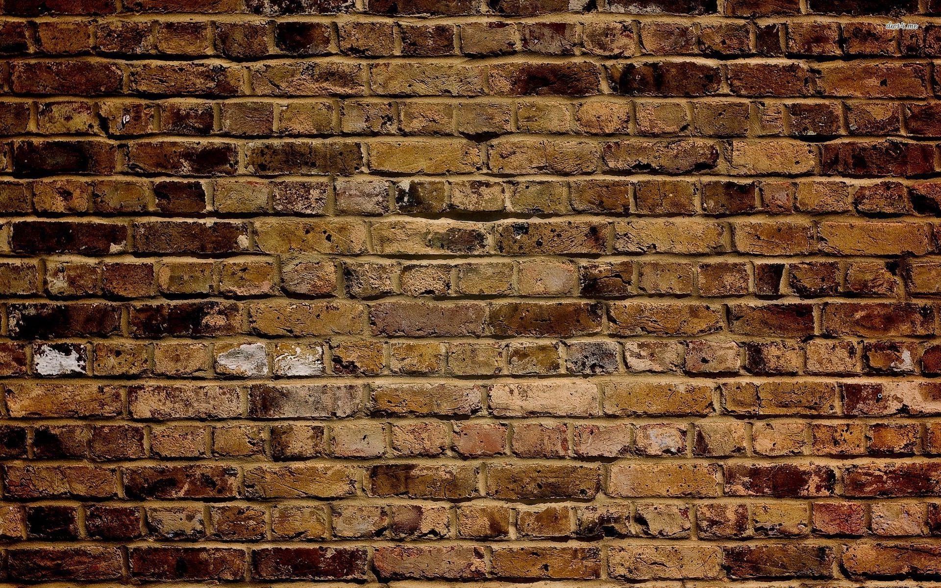 Brick Wall Wallpaper 2560x1600 More46 Background Brick Wall Jpg 1920x1200