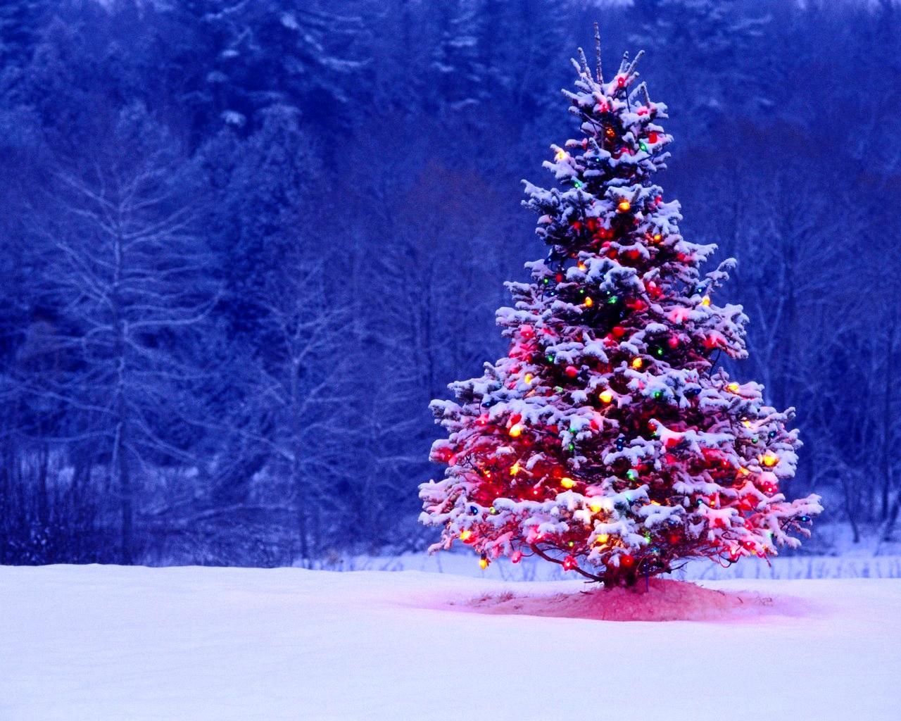 Christmas Desktop Wallpaper Backgrounds Wallpaper 1280x1024 1280x1024