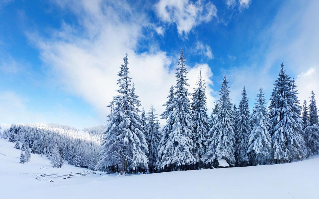 Free Download Desktop Backgrounds Winter Wallpaper Windows