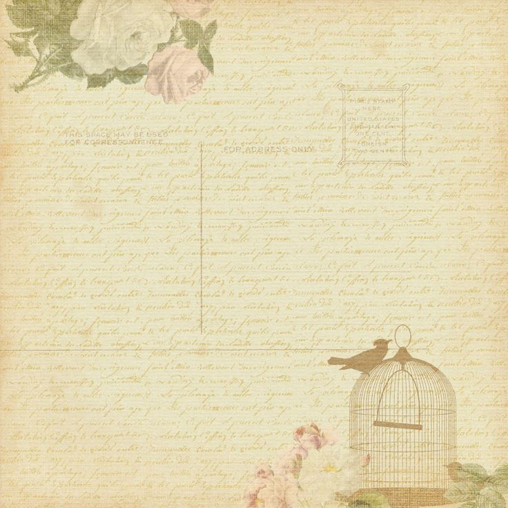 Papers Pinterest Vintage Backgrounds Backgrounds and Birds 736x736