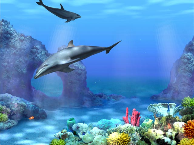 Living 3D Dolphins screensaver 640x480