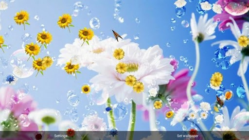 flowers live wallpaper with bubble game for live wallpaper you 512x288