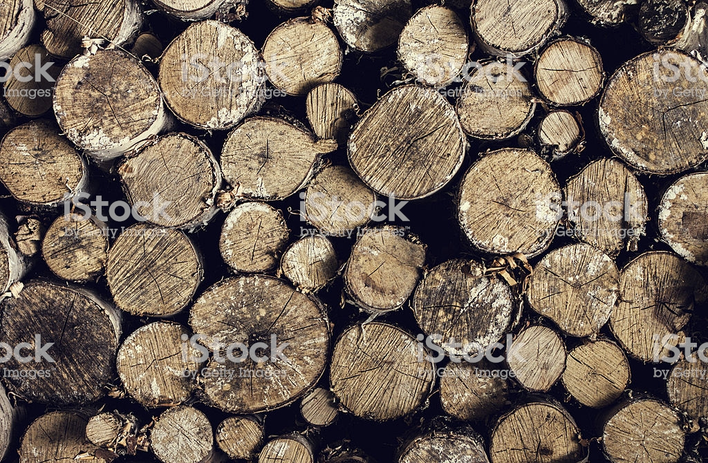 Firewood Background Stacked In The Woodpile Stock Photo   Download 1024x670