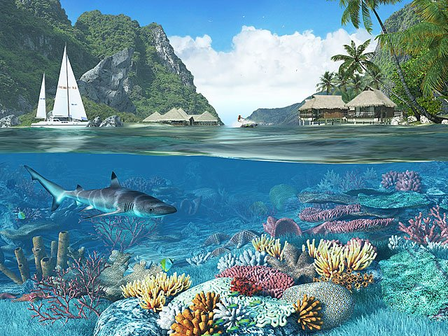 Fish 3D Screensavers   Caribbean Islands   Feast your eyes on the 640x480