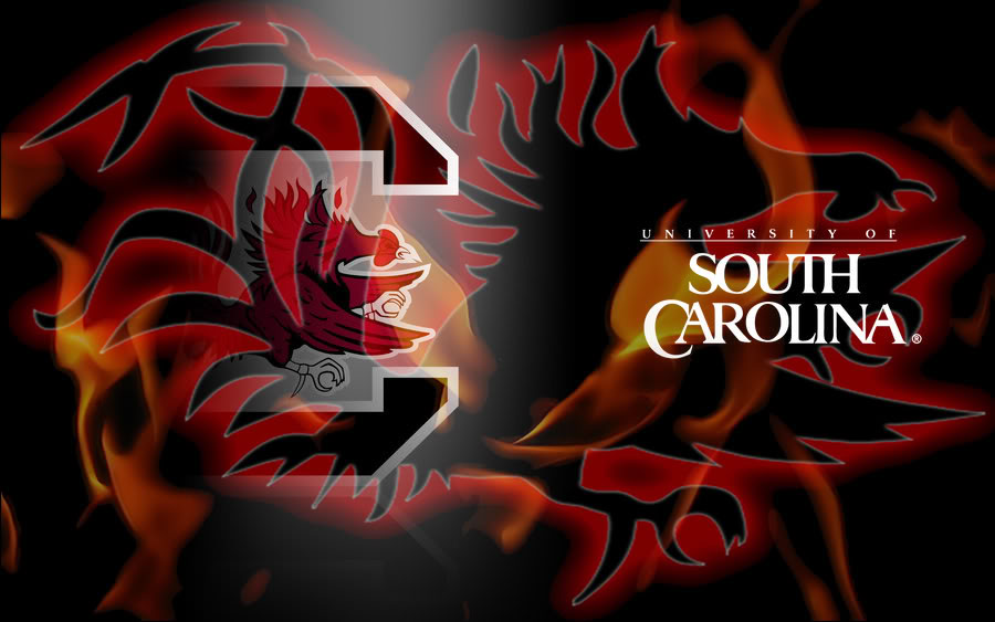 South Carolina Gamecock Wallpaper - WallpaperSafari