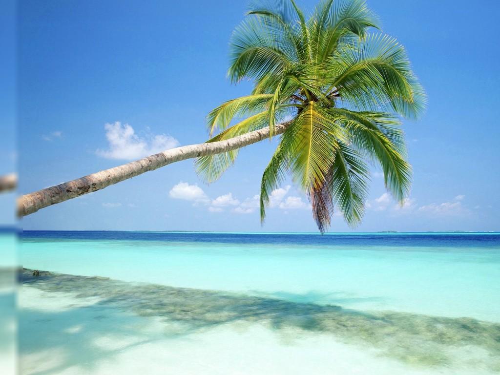 Beach Scene Desktop Wallpaper » beach-scene-desktop-wallpaper-190
