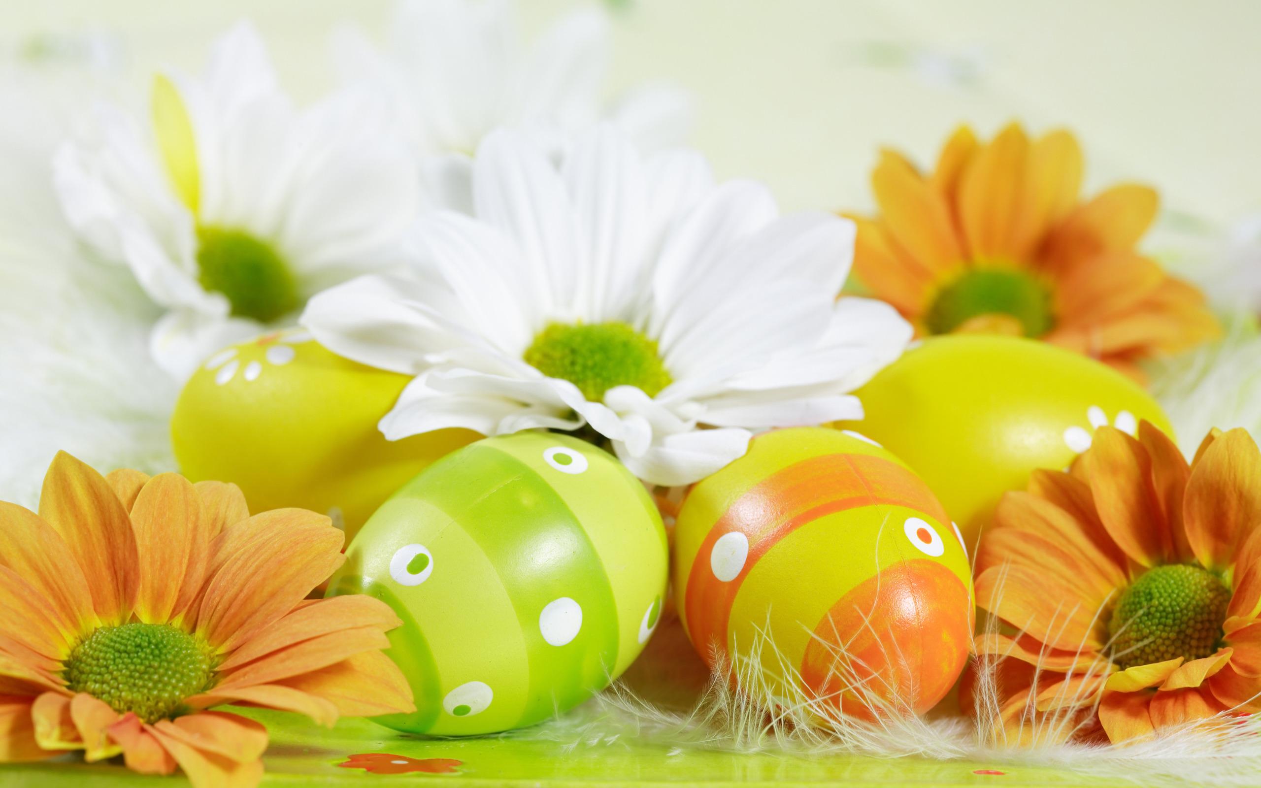 Easter eggs Desktop Wallpapers FREE on Latorocom 2560x1600