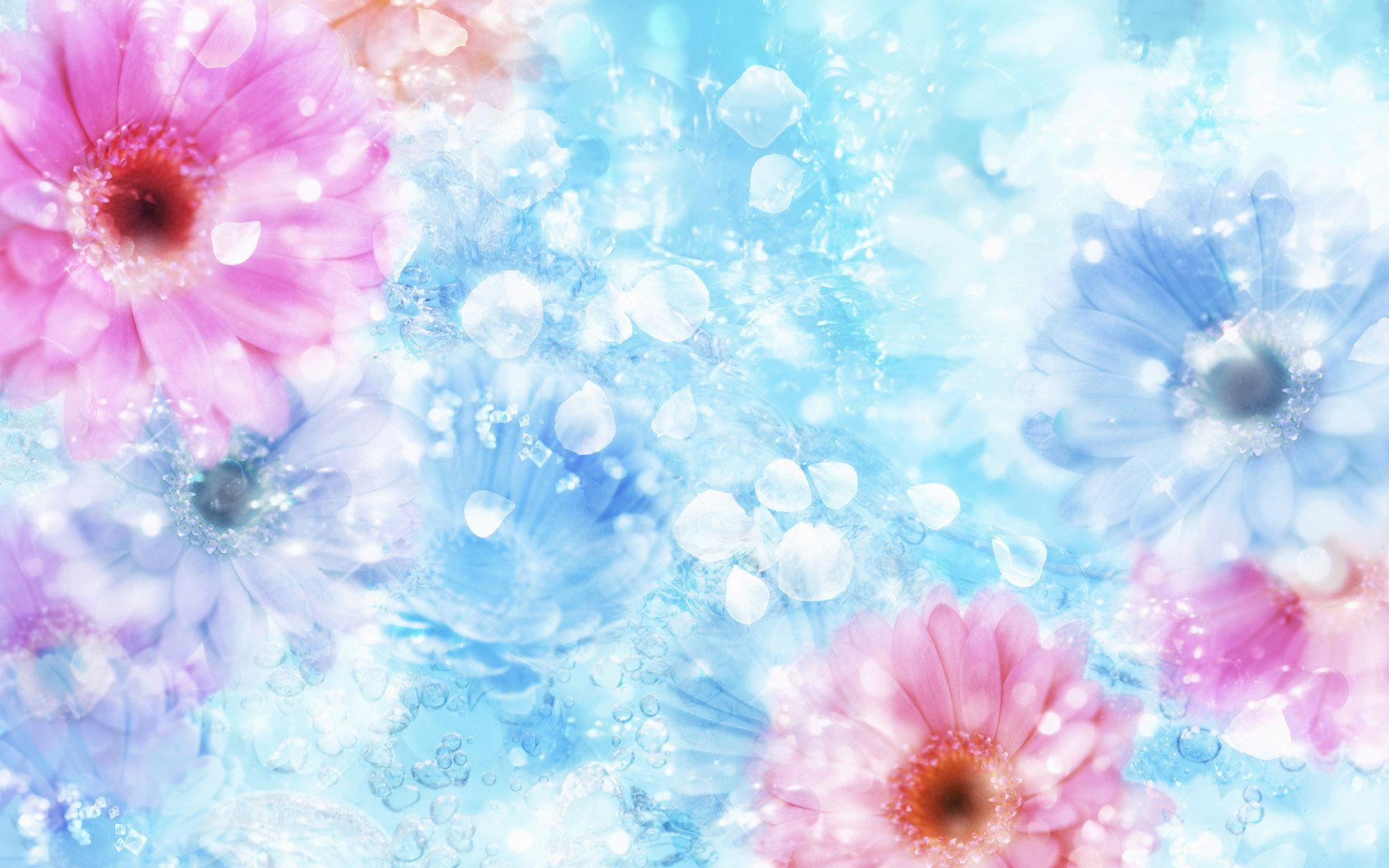 Flower Backgrounds Wallpapers 1920x1200