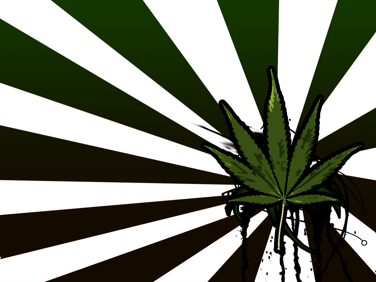 awesome pot leaf wallpaper wallpapersafari pot leaf coloring page pot leaf logo