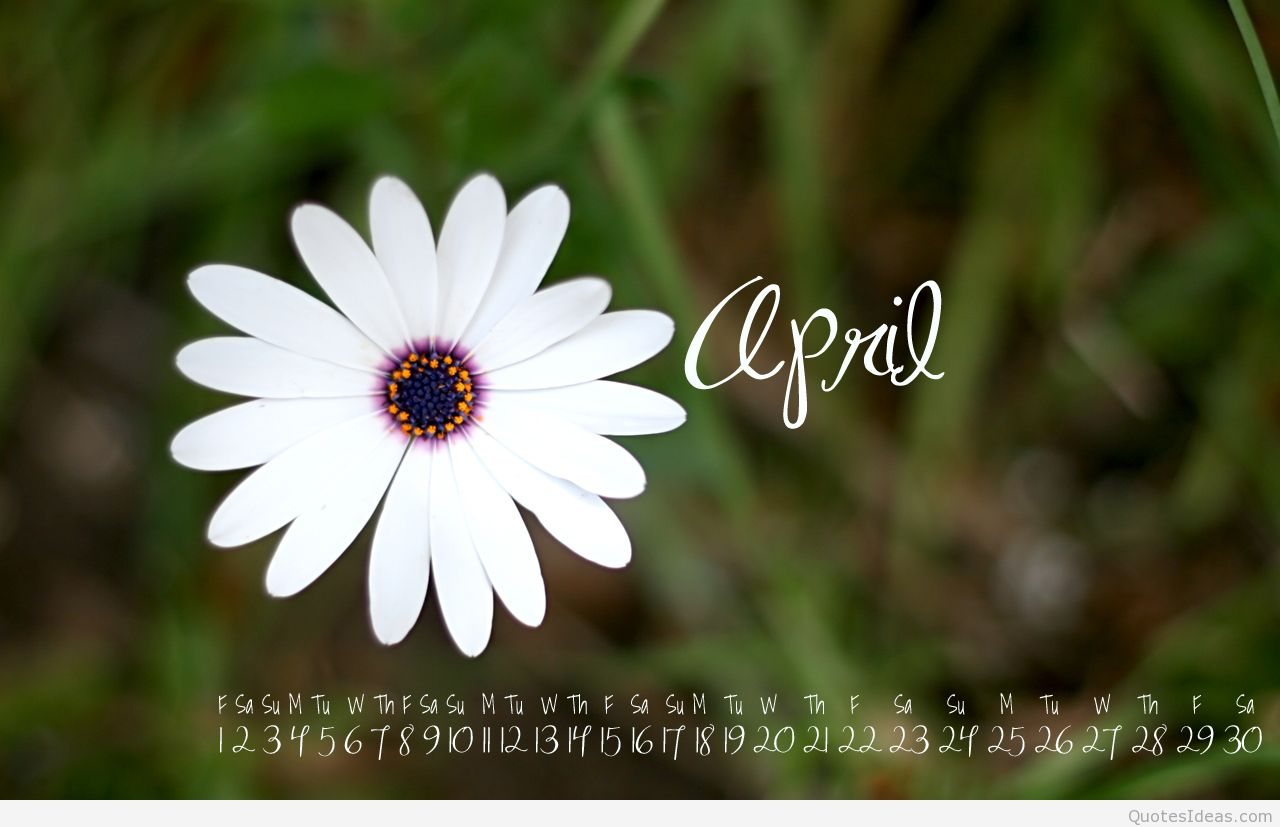 April 2015 wallpaper with calendar download 1280x827