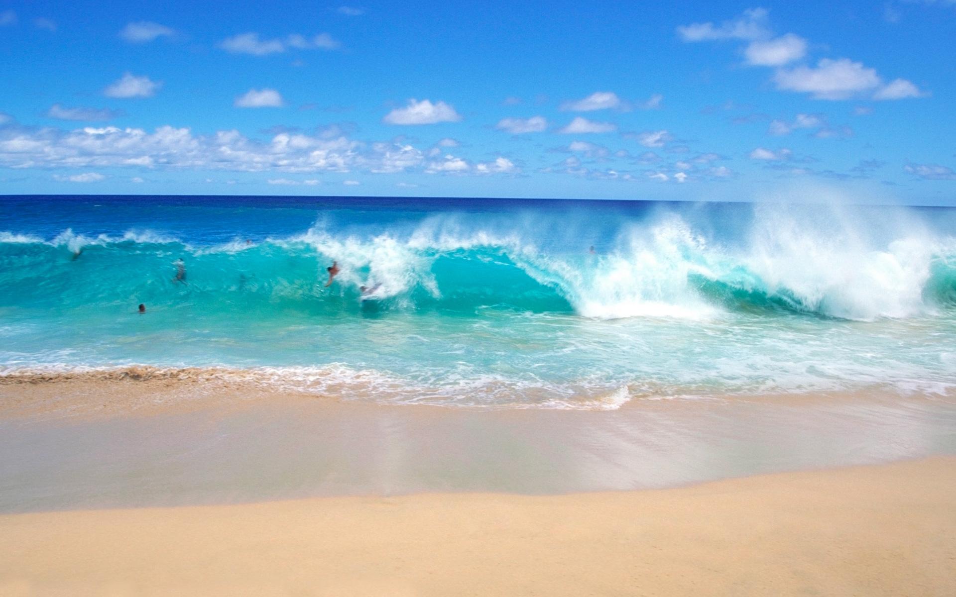 Fun on the playful ocean waves wallpaper   Beach Wallpapers 1920x1200