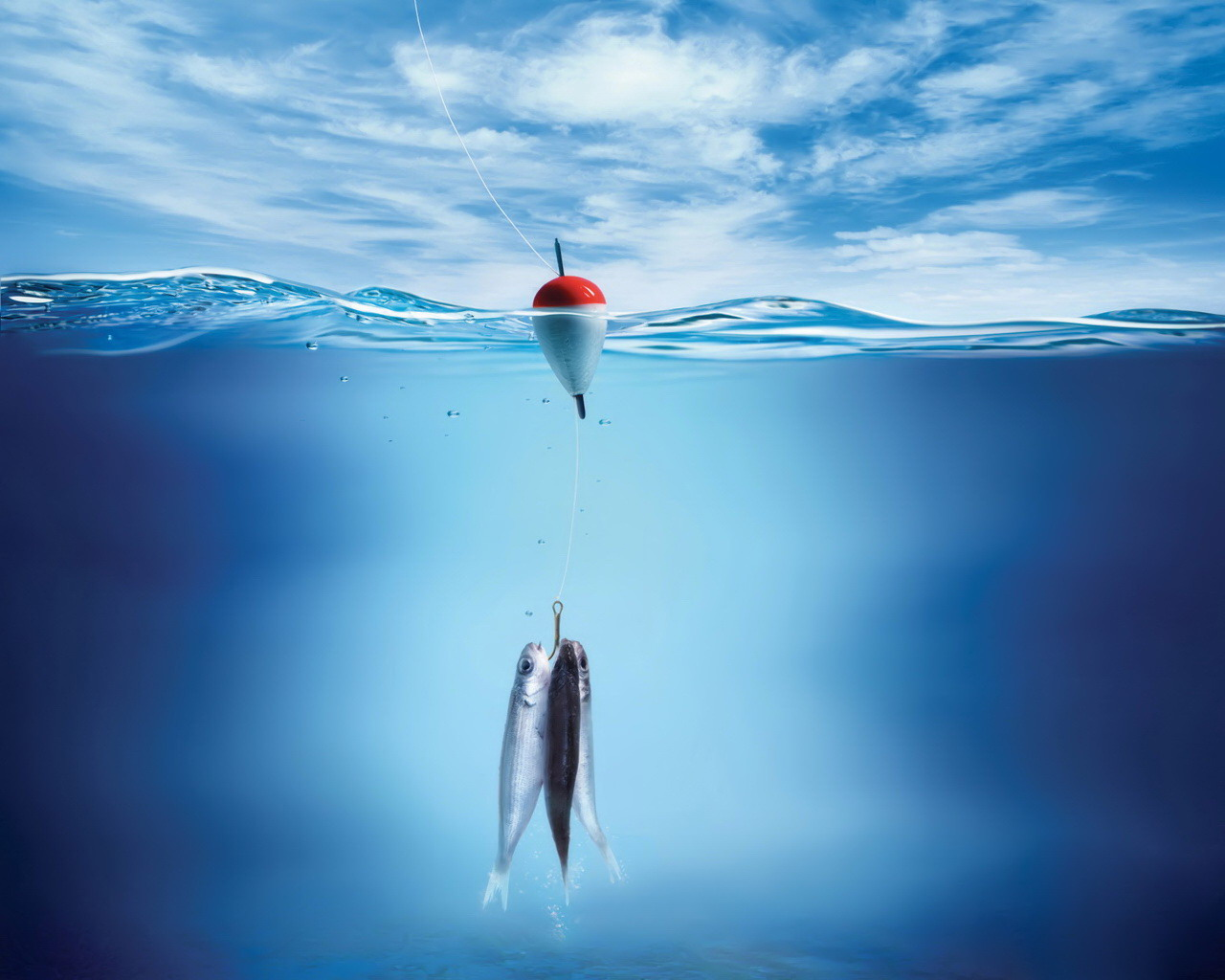 Fishing Lure Wallpapers Life Of A Fishing Lure Myspace Backgrounds 1280x1024